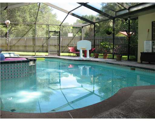 clearwater pool home clearwater florida homes for sale